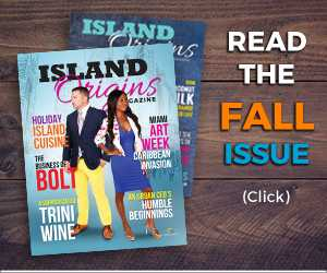 Read the Island Origins 2017 Fall Issue