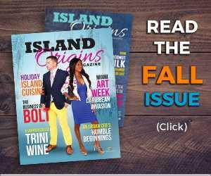 Read the Island Origins 2017 Fall Issue
