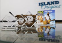 Caribbean American lifestyle quarterly Island Origins won the Florida Magazine Association's silver award for Best New Magazine, silver for Best Writing: Feature, and bronze for Best Writing: Commentary. Photo: David I. Muir