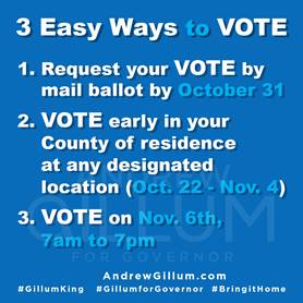 Caribbean vote - Ways to vote in South Florida